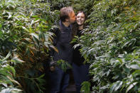Chip Baker kisses his wife Jessica Baker as they pose for a photo at their marijuana nursery at Baker's Medical, Wednesday, Feb. 26, 2020, in Oklahoma City. When voters in conservative Oklahoma approved medical marijuana in 2018, many thought the rollout would be ploddingly slow and burdened with bureaucracy. Instead, business is booming so much cannabis industry workers and entrepreneurs are moving to Oklahoma from states with more well-established pot cultures, like California, Colorado and Oregon. (AP Photo/Sue Ogrocki)