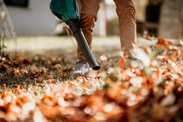 Leaf blowers can be deadly to insects, German politicians have warned (Getty)