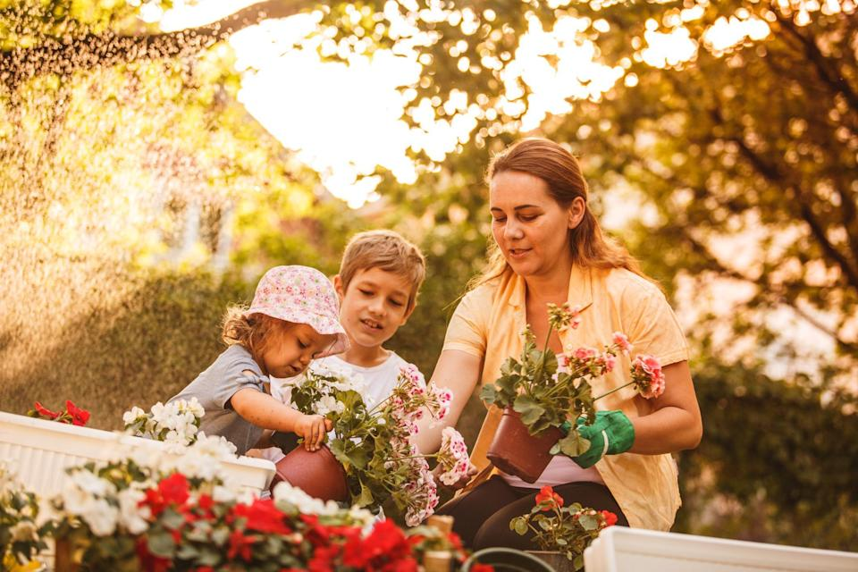 """<p>Many people are searching for the most affordable ideas to get their garden looking beautiful to welcome <a href=""""https://www.theactivetimes.com/travel/best-places-world-see-beautiful-spring-blooms-gallery?referrer=yahoo&category=beauty_food&include_utm=1&utm_medium=referral&utm_source=yahoo&utm_campaign=feed"""" rel=""""nofollow noopener"""" target=""""_blank"""" data-ylk=""""slk:spring flowers"""" class=""""link rapid-noclick-resp"""">spring flowers</a>. This trend has shot up 528% in Pinterest searches. If you or your kids are testing out your green thumb for the first time, these are <a href=""""https://www.theactivetimes.com/best-plants-rookie-gardeners?referrer=yahoo&category=beauty_food&include_utm=1&utm_medium=referral&utm_source=yahoo&utm_campaign=feed"""" rel=""""nofollow noopener"""" target=""""_blank"""" data-ylk=""""slk:the best plants for rookie gardeners."""" class=""""link rapid-noclick-resp"""">the best plants for rookie gardeners.</a></p>"""