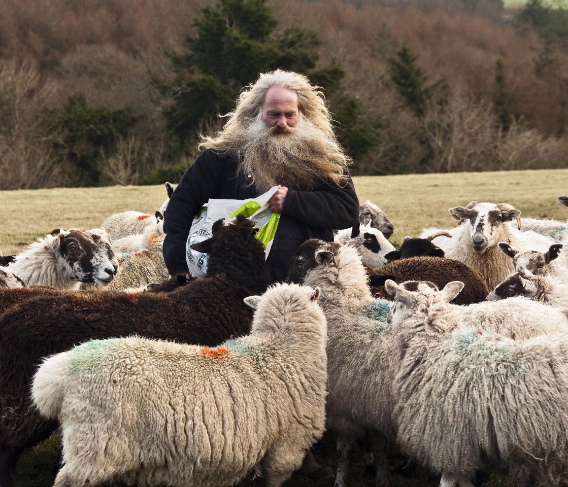'Colin the Shepherd at Milton Abbot', Devon: Les Bennett was runner-up in the 'Living the View' adult class for this picture of a shepherd he met in west Devon. (Les Bennett, Landscape Photographer of the Year)
