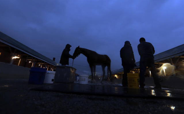 Kentucky Derby hopeful Tapiture gets a bath after a morning workout at Churchill Downs Monday, April 28, 2014, in Louisville, Ky. (AP Photo/Charlie Riedel)