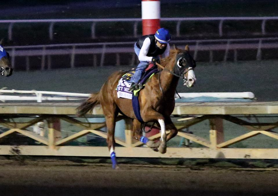 ARCADIA, CALIFORNIA- OCTOBER 27: Improbable works at Santa Anita Park on October 27, 2019 in Arcadia, California (Photo by Horsephotos/Getty Images)
