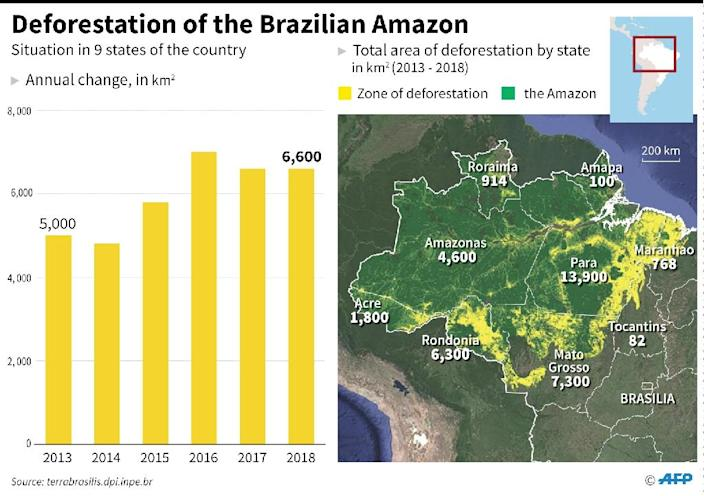 Progression of deforestation in the Brazilian Amazon, with total area by state (AFP Photo/María SCARPINELLI)