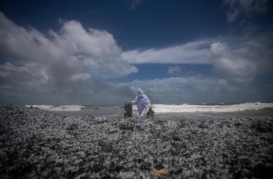 <p>Beaches on the Sri Lankan coast are covered with debris from the incident</p> (AP)