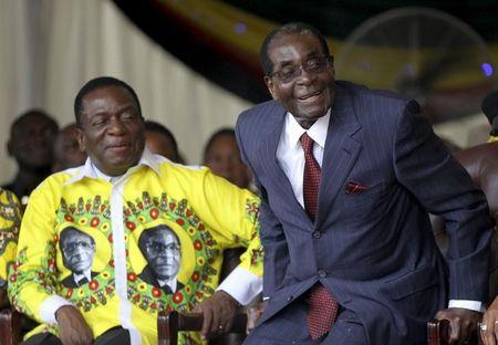 Mugabe Knifes VP, Could Install Wife