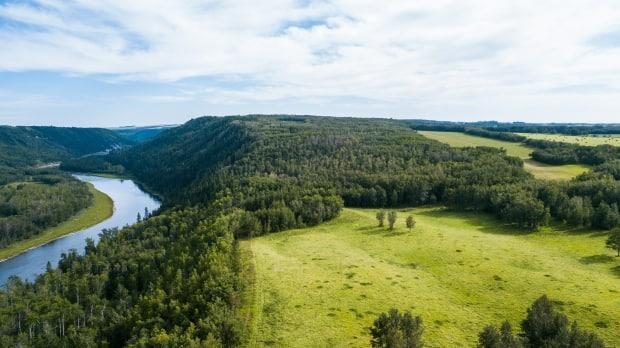 The conservation site that now belongs to Nature Conservancy of Canada near Red Deer, Alta.  (Brent Calver/ NCC - image credit)