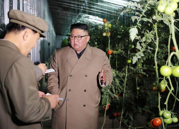 PHOTO: North Korean leader Kim Jong-Un visits Jungphyong vegetable greenhouse farm and tree nursery under construction in Kyongsong county, Oct. 18, 2019. (Kcna Via Kns/AFP via Getty Images, FILE)