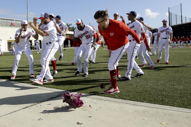 Washington Nationals pitcher Sean Doolittle smashes a cabbage on a sidewalk while teammates cheer as part of a team-building exercise and in recognition of National Cabbage Day during spring training baseball practice Monday, Feb. 17, 2020, in West Palm Beach, Fla. (AP Photo/Jeff Roberson)