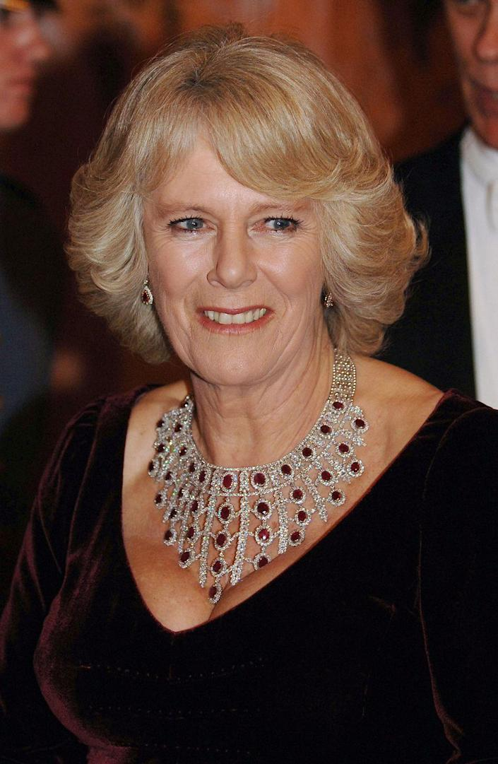<p>Camilla hasn't disclosed where this diamond and ruby necklace came from (it is rumored to be a Saudi gift), but it is certainly spectacular. </p>