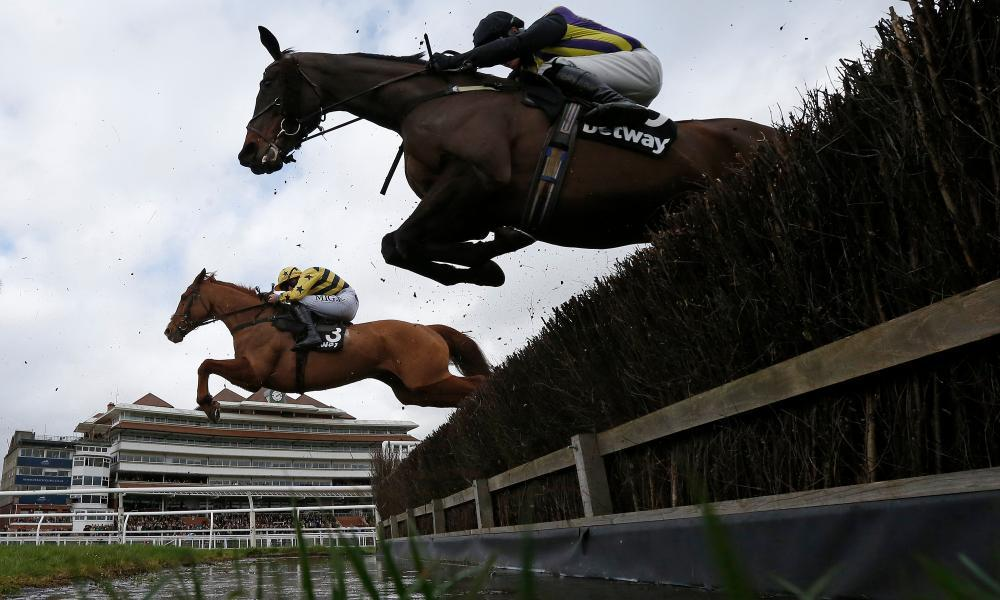 A general view as runners clear the water jump at Newbury, where they race on Friday.