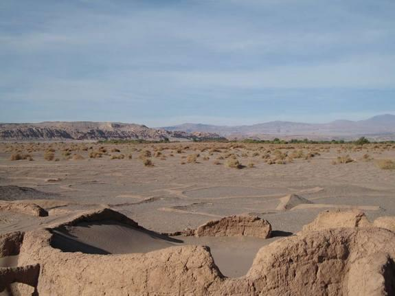 The Chilean mummies were in good condition, preserved naturally from the high temperatures, extreme dryness and high soil salinity in the Atacama Desert (shown here).