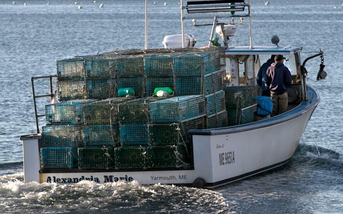 A lobster boat heads out to set traps off Portland, Maine - Robert F Bukaty/AP