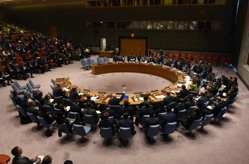 Russia vetoes UN resolution on extending Syria gas attacks probe