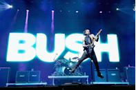<p>They disbanded in 2002 due to low record sales, and lead singer Gavin Rossdale (who was married to No Doubt singer Gwen Stefani for a time) had a new band Institute for several years before starting a solo career. Bush reunited in 2010 and are still together, but Rossdale is the only original member involved. </p>