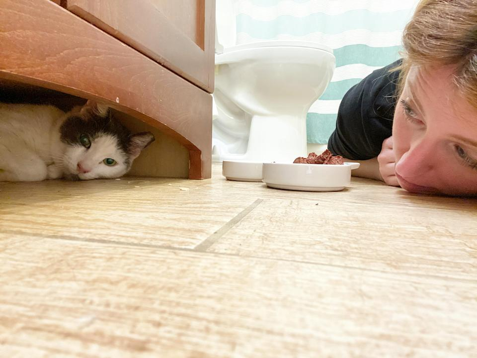 Becky Horvath used her quarantine to foster a cat. (Photo: Becky Horvath)