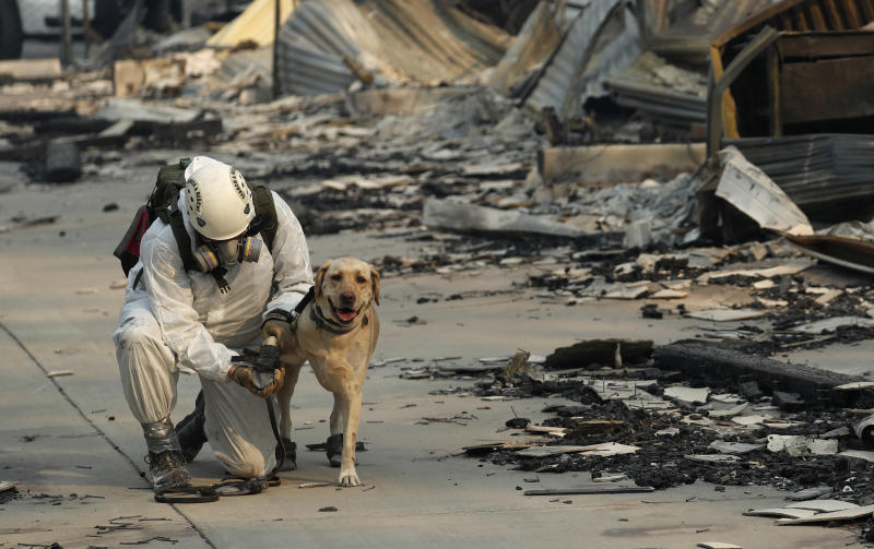 Volunteers went from burned house to burned house Sunday, accompanied by a cadaver dog with a bell on its collar that jingled in the grim landscape. (ASSOCIATED PRESS)