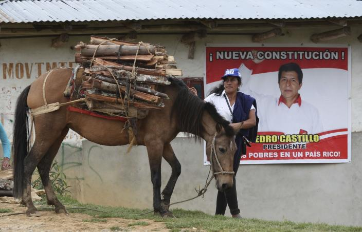 A woman walks her horse carrying firewood past a home decorated with a poster of Free Peru party presidential candidate Pedro Castillo in Puna, Peru, Friday, April 16, 2021. Castillo, a rural teacher, who has proposed rewriting Peru's constitution and deporting all immigrants living in the country illegally who commit crimes, will face rival candidate Keiko Fujimori in the June 6 presidential run-off election. (AP Photo/Martin Mejia)