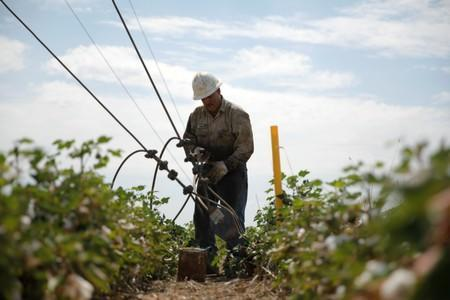 Miguel Holguin, an oil field worker who immigrated from Mexico, works in a field in Seminole