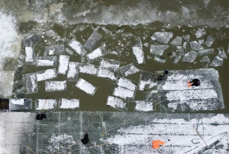 More than 100 people work on the Songhua River to harvest 170,000 cubic metres of ice bricks