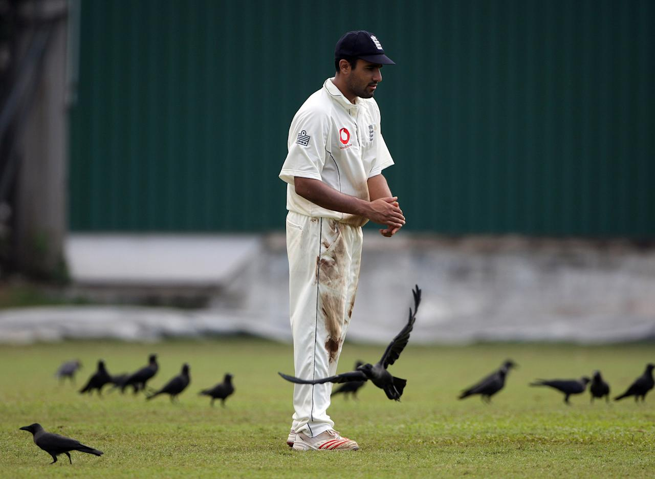 COLOMBO, SRI LANKA - NOVEMBER 21: England fielder Ravi Bopara has a flock of birds to contend with during Day Two of the warm up game between Presidents Board XI and England at the Colombo Cricket Club Ground on November 21, 2007 in Colombo, Sri Lanka.  (Photo by Stu Forster/Getty Images)