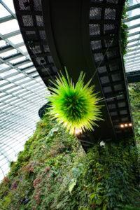 Chihuly Studio's 'Uranium Green Icicle Chandelier' at the Cloud Forest. Photo: Coconuts