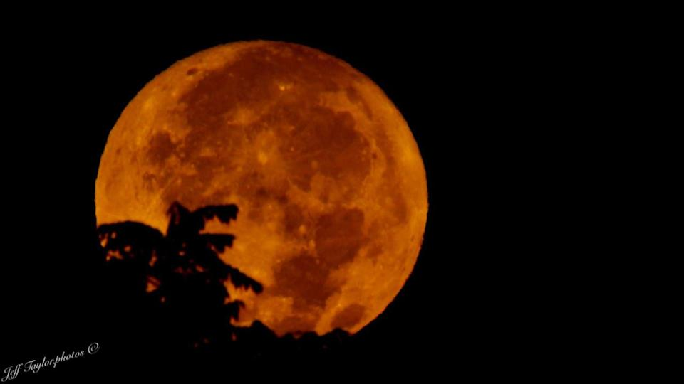 Look up Monday night to see the Full Harvest Corn Moon