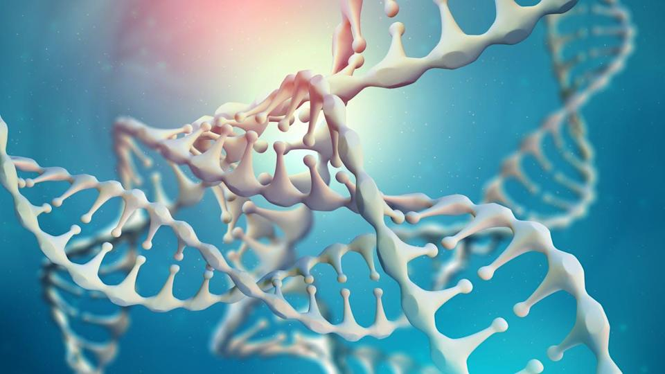"""<span class=""""caption"""">Genetic therapies may treat previously uncurable conditions, like sickle cell disease.</span> <span class=""""attribution""""><span class=""""source"""">(Shutterstock)</span></span>"""