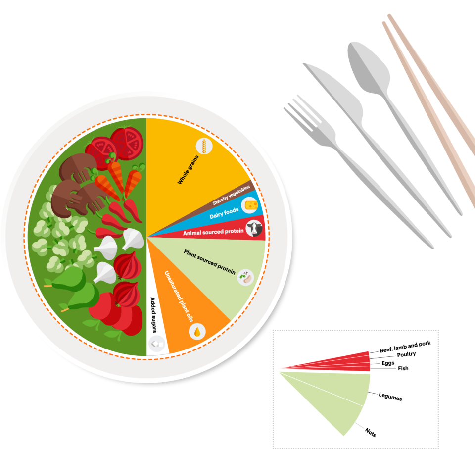 A  planetary  health  plate  should  consist  by  volume  of  approximately  half  a  plate  of  vegetables  and  fruits, according to experts. Photo: EAT-Lancet Commission