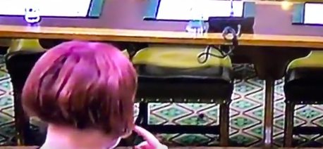 Does this footage show a frog in the House of Commons? (BBC)