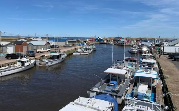 North Lake Harbour at the eastern tip of P.E.I. is one of the Island's busiest, with almost 100 lobster fishing boats.