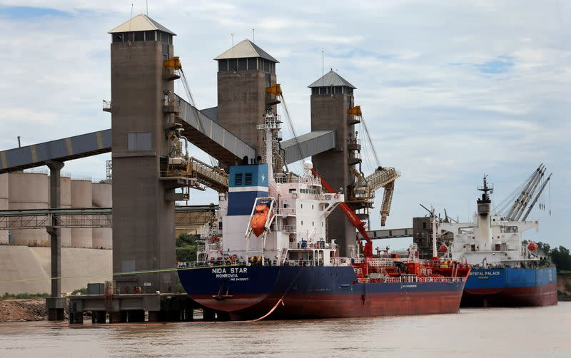 FILE PHOTO: Grain is loaded onto ships for export at a port on the Parana river near Rosario, Argentina