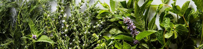 Fresh herbs you grow yourself make everything taste better.