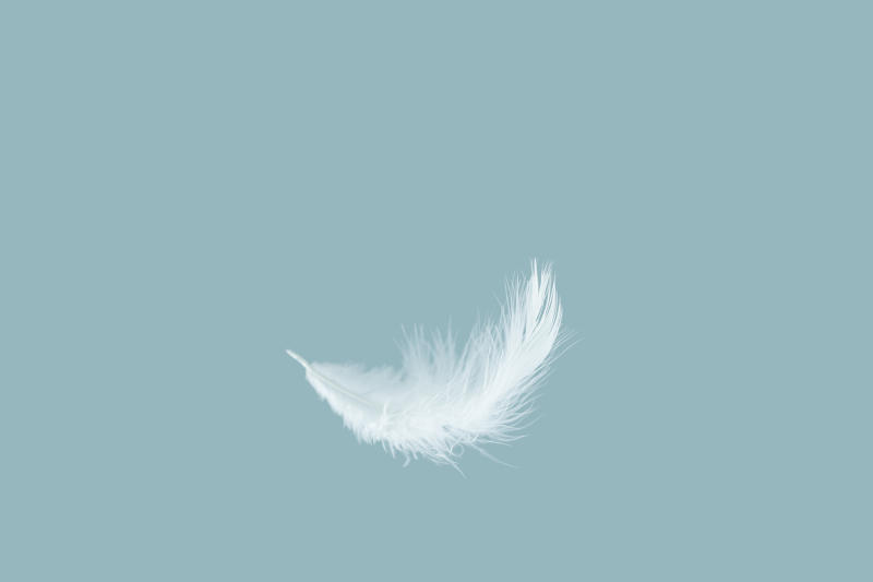 Single white feather falling in the air. blue pastel background.