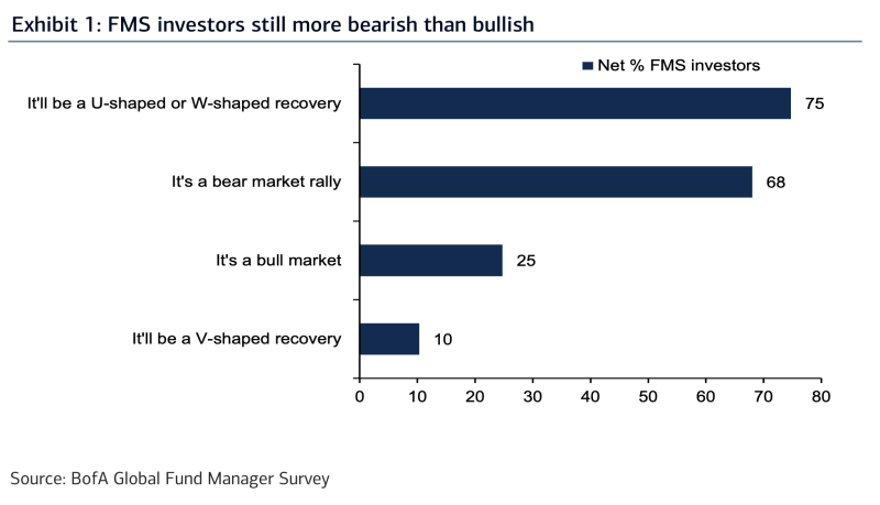 The vast majority of investors surveyed by Bank of America are still looking at the current market rally with skepticism, according to the firm's latest fund manager survey. (Source: Bank of America Global Research)