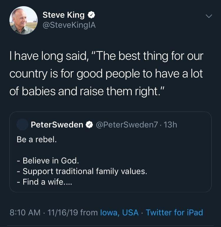 A tweet from Rep. Steve King, promoting far-right influencer Peter Sweden. (Photo: HuffPost US)