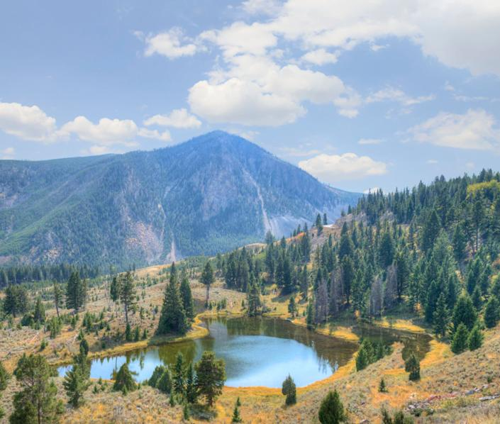 Another win for nature lovers, Wyoming is home to the beautiful Yellowstone National Park. But besides the breathtaking scenery, early retirees can benefit from having no state personal income taxes and a low sales tax.