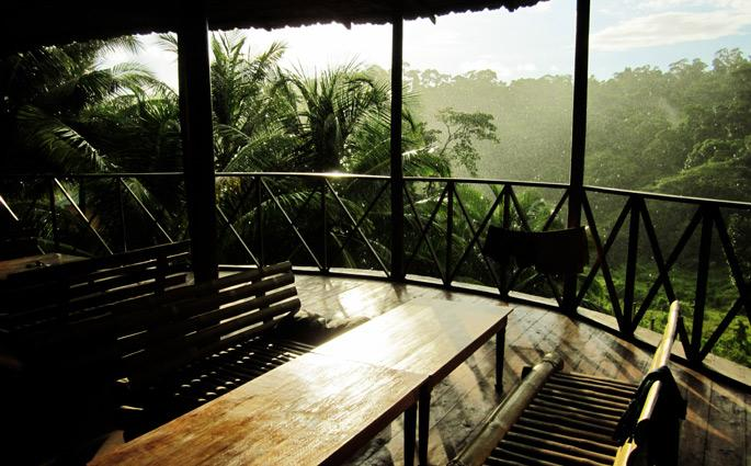 The Wildgrass forest resort, bathed in evening rain. Photo: Siddharth Dasgupta