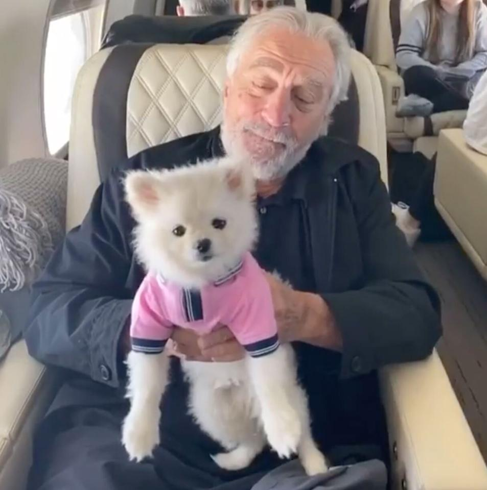 "Robert DeNiro traveled with Irishman director Martin Scorsese and his dog Yeti Scorsese by private jet. ""Nothing but love for my Uncle Bob!"" the <a href=""https://www.instagram.com/p/B8aKpdTJi2d/"">photo</a> caption on the dog's Instagram account reads."