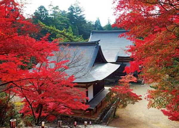 Japan Trip: 10 Most Popular Temples in Kyoto (October 2019 Ranking)