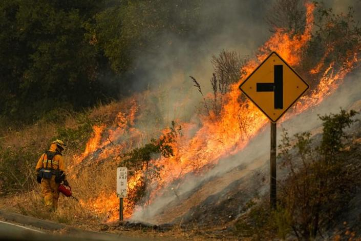 CALISTOGA, CA - SEPTEMBER 29: Firefighter uses a drip torch during a firing operation during the Glass Fire slowly creep across a clearing along Silverado Trail (CA-29) on Tuesday, Sept. 29, 2020 in Calistoga, CA. (Kent Nishimura / Los Angeles Times)