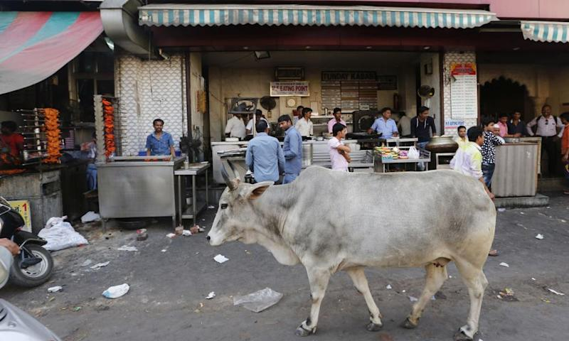 A cow walks in front of a kebab shop in Lucknow, India