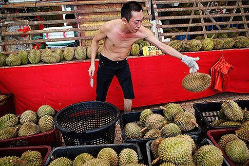 A durian seller throws a durian back into a basket at his stall in Geylang.