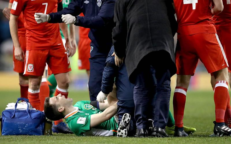 Seamus Coleman suffered an horrific broken leg - Rex Features