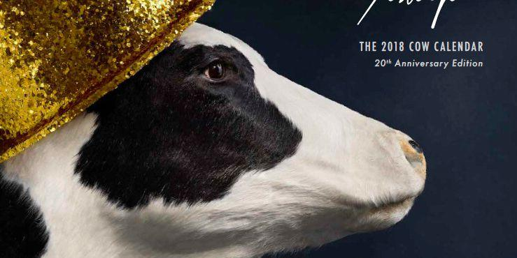 Chick Fil A 2020 Cow Calendar February Chick fil A Is Getting Rid of Its Cow Calendars, and Fans Are
