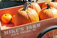 """<p><strong>Monroe, North Carolina (Sept 24-Nov 14)</strong></p><p>To kick off the fall festivities, head over to <a href=""""https://awshucksfarms.com/"""" rel=""""nofollow noopener"""" target=""""_blank"""" data-ylk=""""slk:Aw Shucks Farms"""" class=""""link rapid-noclick-resp"""">Aw Shucks Farms</a> for their signature corn maze and pumpkin patch. Their fun-filled wagon rides and animal barn are some of the most popular attractions of the year. Admission is $11 for adults, $9 for children and free for those ages 3 and under.</p><p><strong>RELATED: </strong><a href=""""https://www.goodhousekeeping.com/holidays/halloween-ideas/g1249/fall-quotes/"""" rel=""""nofollow noopener"""" target=""""_blank"""" data-ylk=""""slk:44 Fall Quotes That Will Get You Excited for Sweater Weather"""" class=""""link rapid-noclick-resp"""">44 Fall Quotes That Will Get You Excited for Sweater Weather</a></p>"""