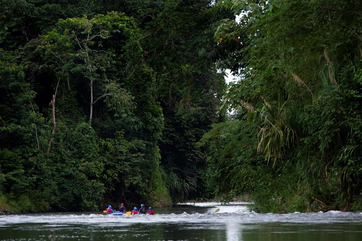 A group of tourists takes a tour on the Sarapiqui river on a farm where plantations compensate the carbon footprint of its visitors, in Heredia, Sarapiqui, Costa Rica, on October 28, 2020. - Costa Rica reported that tourists will be able to offset the carbon footprint generated by their flights and land travel with the aim of supporting the green economy the country promotes internationally. The initiative includes tree planting, protection of hydrographic basins, natural regeneration, and implementation of agroforestry systems on farms. (Photo by Ezequiel BECERRA / AFP) (Photo by EZEQUIEL BECERRA/AFP via Getty Images)