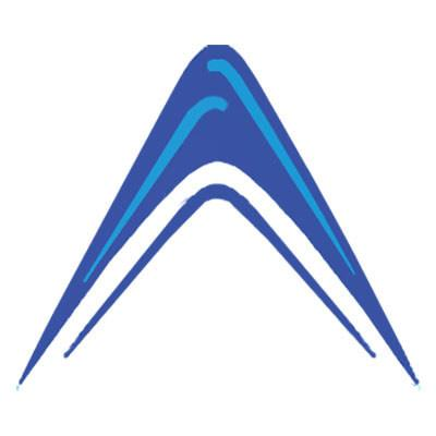 Absolute Market Insights Logo