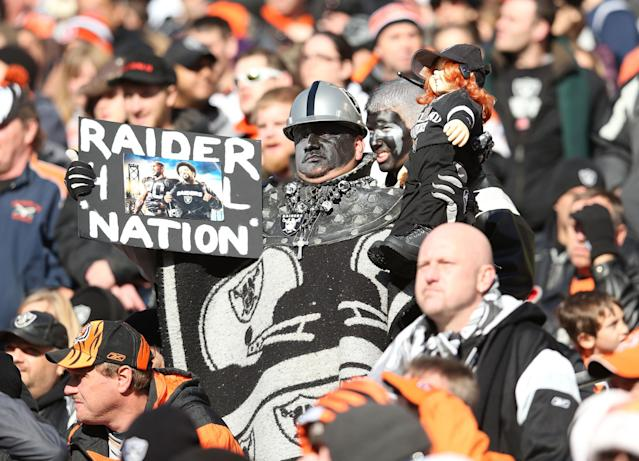 CINCINNATI, OH - NOVEMBER 25: A Oakland Raiders fan watches the action during the NFL game against the Cincinnati Bengals at Paul Brown Stadium on November 25, 2012 in Cincinnati, Ohio. (Photo by Andy Lyons/Getty Images)