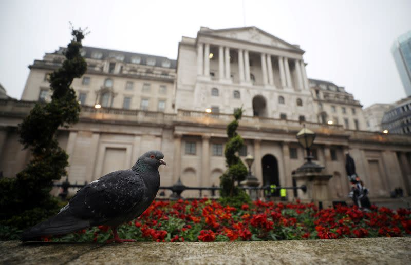 A pigeon stands in front of the Bank of England in London