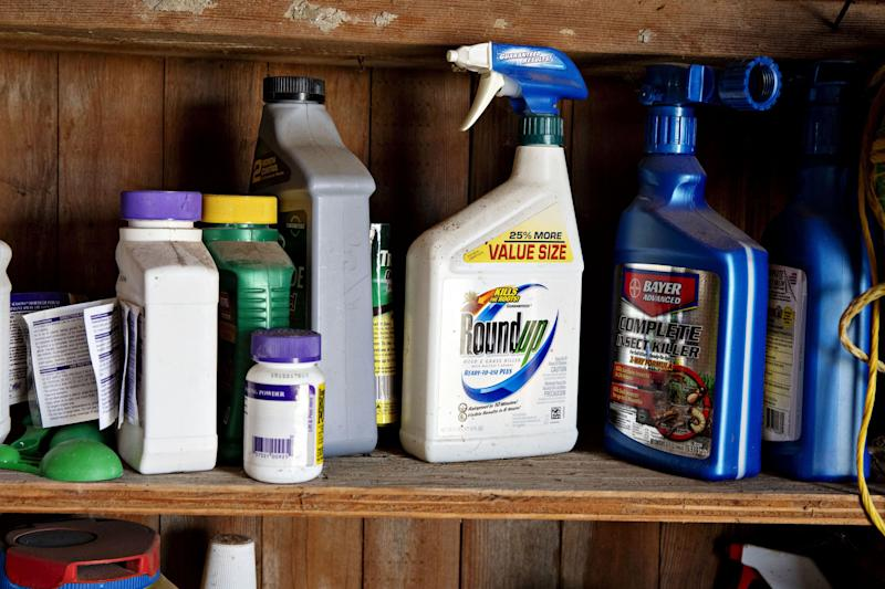 Photo of shelf of weed killers including Roundup, a product a man claimed caused his cancer.
